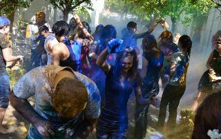 akademie-colour-fest